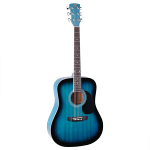 Soundsation Yosemite DN-BLS Acoustic Guitar