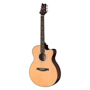 PRS SE A55EBG-MAPLE Backsides El/Acoustic Guitar